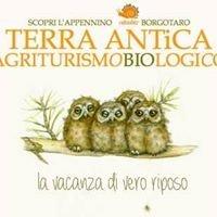 Agriturismo Biologico Terra Antica