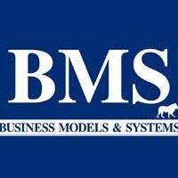 BMS Management Consultants S.A.