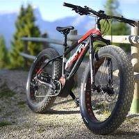 Mountain Bike Elettriche Noleggio/Vendita-Auto/Furgoni ecc Palano Servizi
