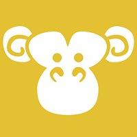 Gold Monkey Studio