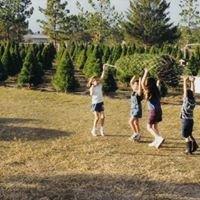 Neilson's Christmas Tree Farm