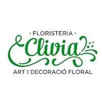 Floristería Clivia Ibiza