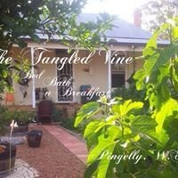 The Tangled Vine Cafe & Second Hand