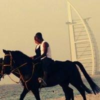 A3yan Dubai Equestrian Club نادي أعيان دبي للفروسية