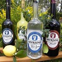 Myrsine Liquori