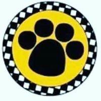 Pet Taxi S.L.