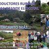 """Productores Rurales: Piedra Grande """"El Ocotal"""""""