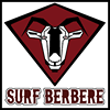 Surf Berbere Surf Camps