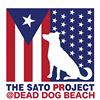 The Sato Project thumb