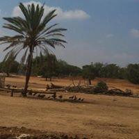ספארי רמת גן - Safari Ramat Gan