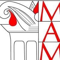 Missione Archeologica a Mozia