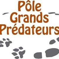 Pôle Grands Prédateurs