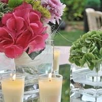 GALA Wedding-Events