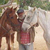 Horse riding on Aegina