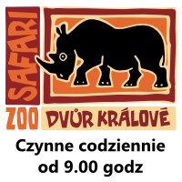 Zoo Safari Dvur Kralove Czechy