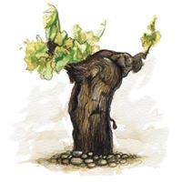 Organic Rioja Wines-Navarrsotillo