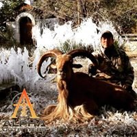Alpha Outfitters
