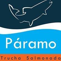 Páramo - Trucha Salmonada