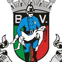Bombeiros Voluntários de São João da Madeira