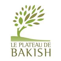 Le Plateau de Bakish