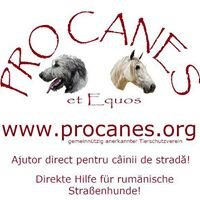 PRO Canes et Equos