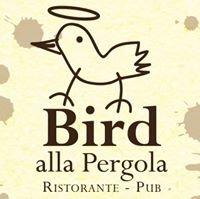 Bird alla Pergola