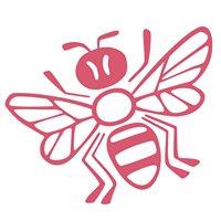 Včelí kRaj