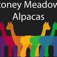 Stoney Meadows Alpacas