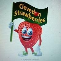 Clevedon Strawberries