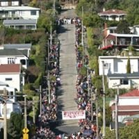Baldwin Street (Worlds Steepest Street)