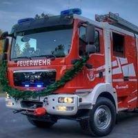 Freiwillige Feuerwehr Dippoldiswalde