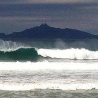 Waipu Cove Surf School