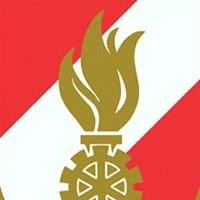 Freiwillige Feuerwehr Wildbach