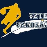 Naturtex-SZTE-Szedeák férfi kosárlabdacsapat