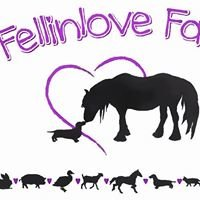 Fellinlove Farm