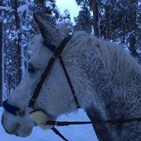 Vájal Ride in Sápmi