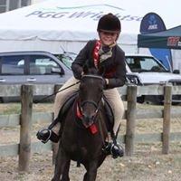 Hill Top Equestrian