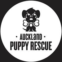 Auckland Puppy Rescue