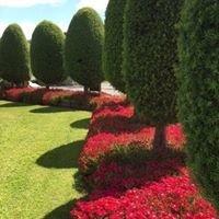 Otorohanga Kiwi Holiday Park & Accommodation