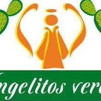 Los Angelitos verdes de Milpa Alta