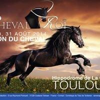 Salon Cheval Roi
