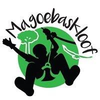 Magoebaskloof Canopy Tour