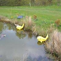 Golf Club Erfurt