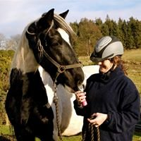 Felicity George - Equine Behaviour Consultant