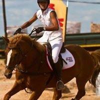 Kraaibosch Equestrian Centre
