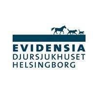 Evidensia Specialistdjursjukhuset Helsingborg