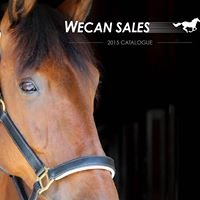 Wecan Sales