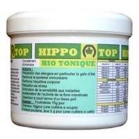 Hippo-Top