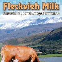 Fleckvieh Guest Farm & Grootvadersbosch Landgoed