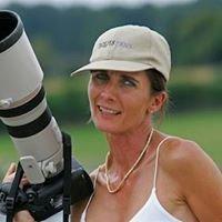 Bildagentur Valeria Streun